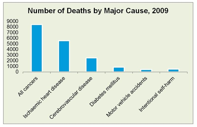 Deaths by cause 2009